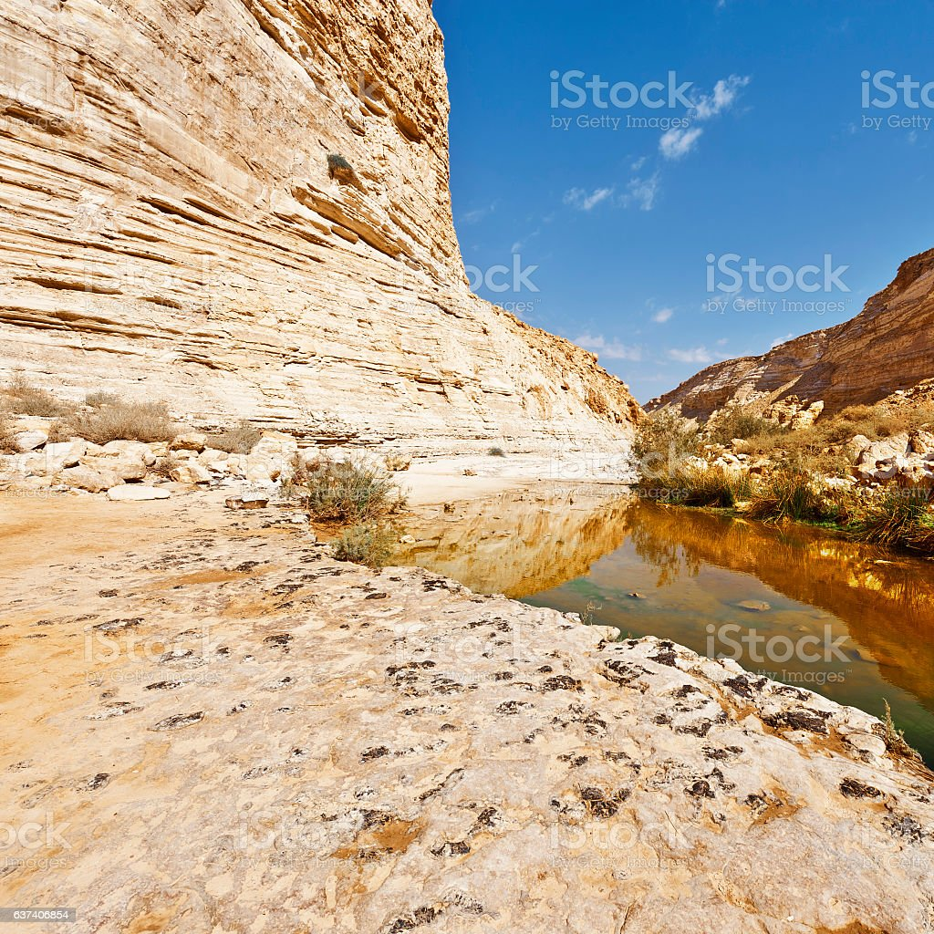 Canyon in Israel stock photo