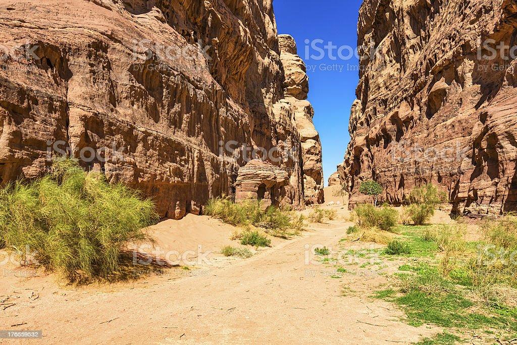 Canyon in Wadi Rum desert of Jordan royalty-free stock photo