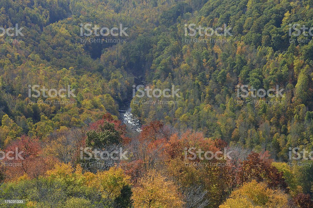 Canyon of Blackwater River in Fall stock photo