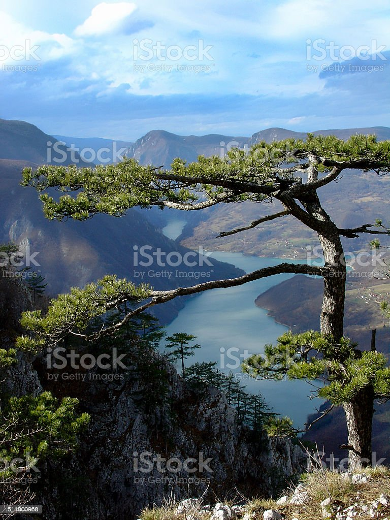 Canyon of Drina River in Serbia stock photo