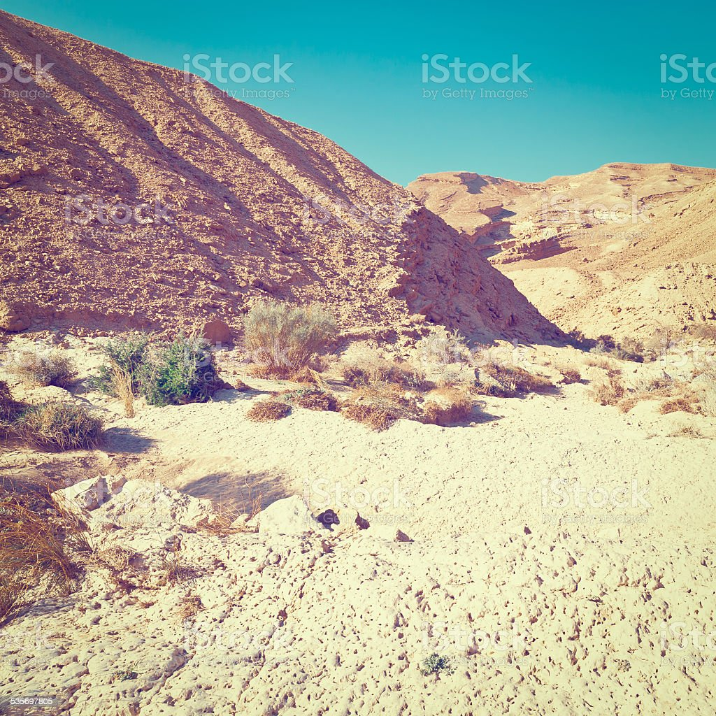 Canyon stock photo