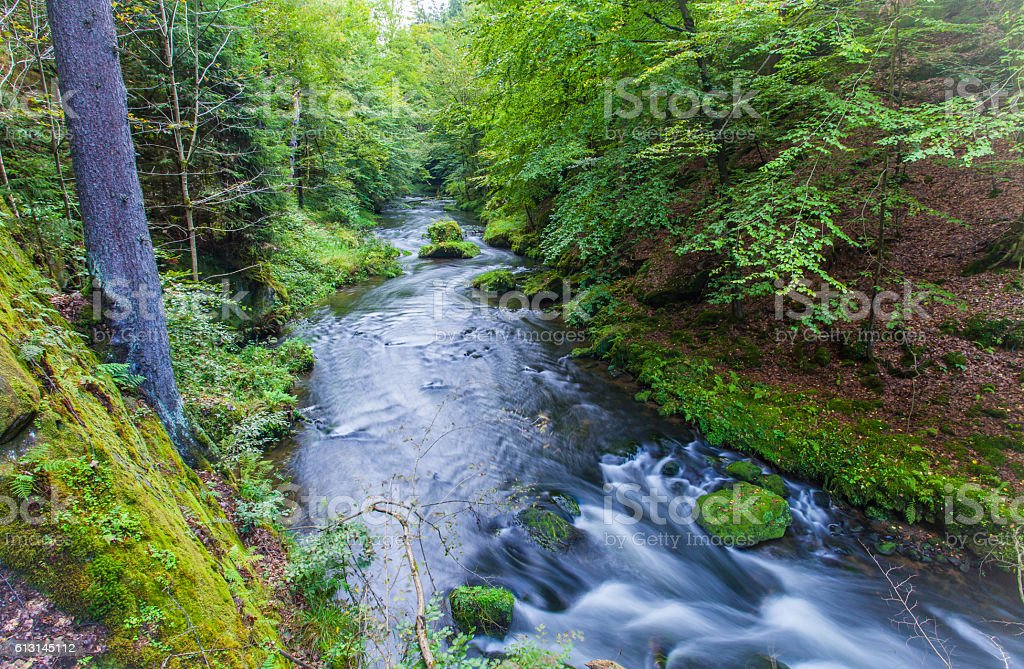 Canyon scenery and trails Kamnitz Gorge in the Czech Switzerland stock photo