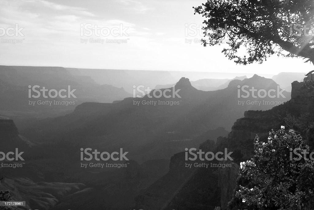 Canyon Vista stock photo