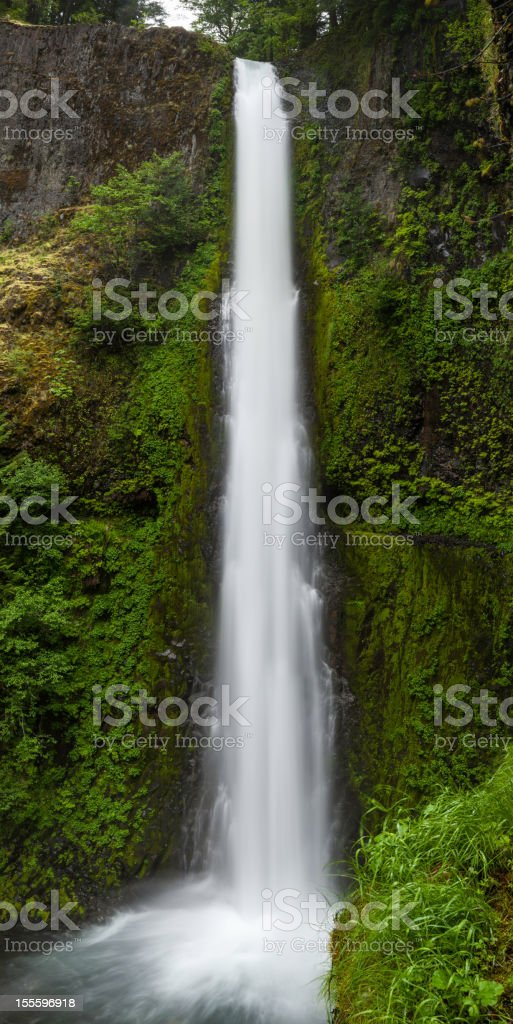 Canyon waterfall green forest wilderness Oregon stock photo