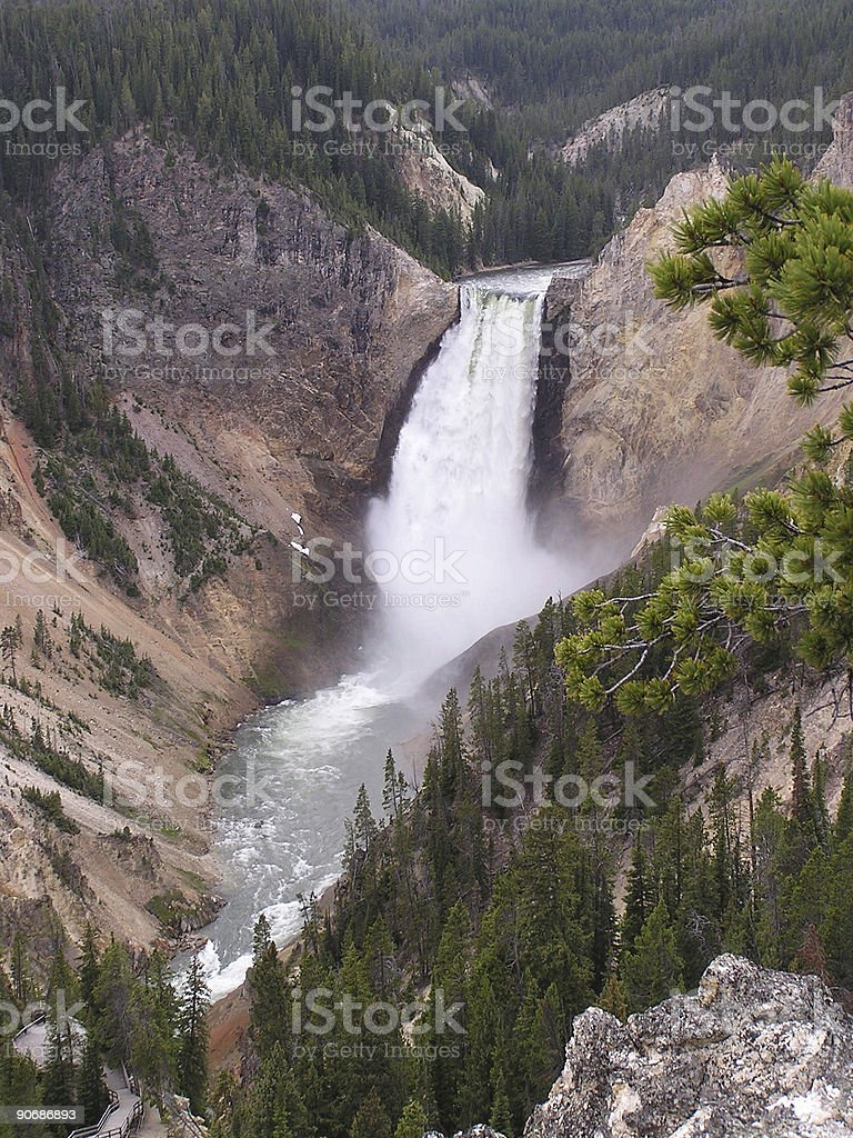 canyon - Yellowstone park stock photo