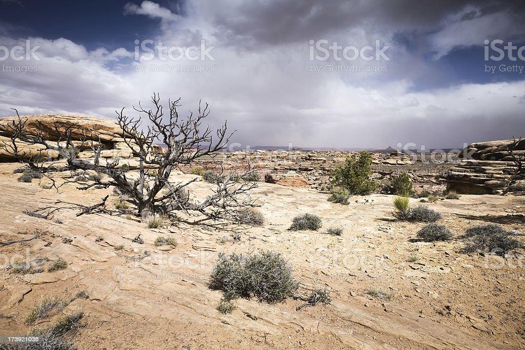Canyonlands Storm stock photo