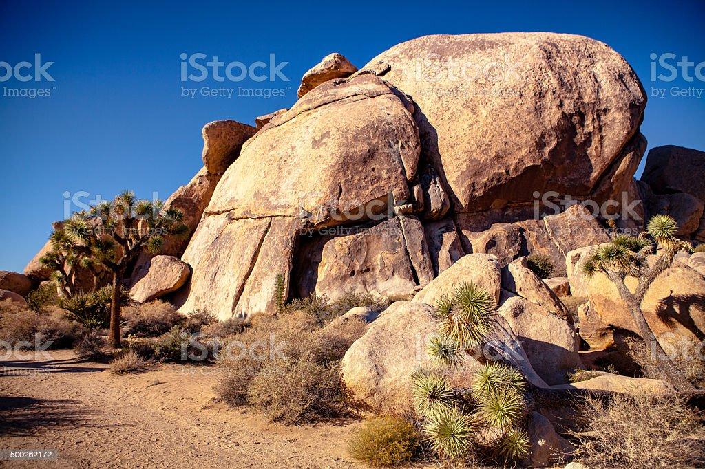 Cap Rock, Monzogranite Rock Formation, Joshua Tree National Park royalty-free stock photo
