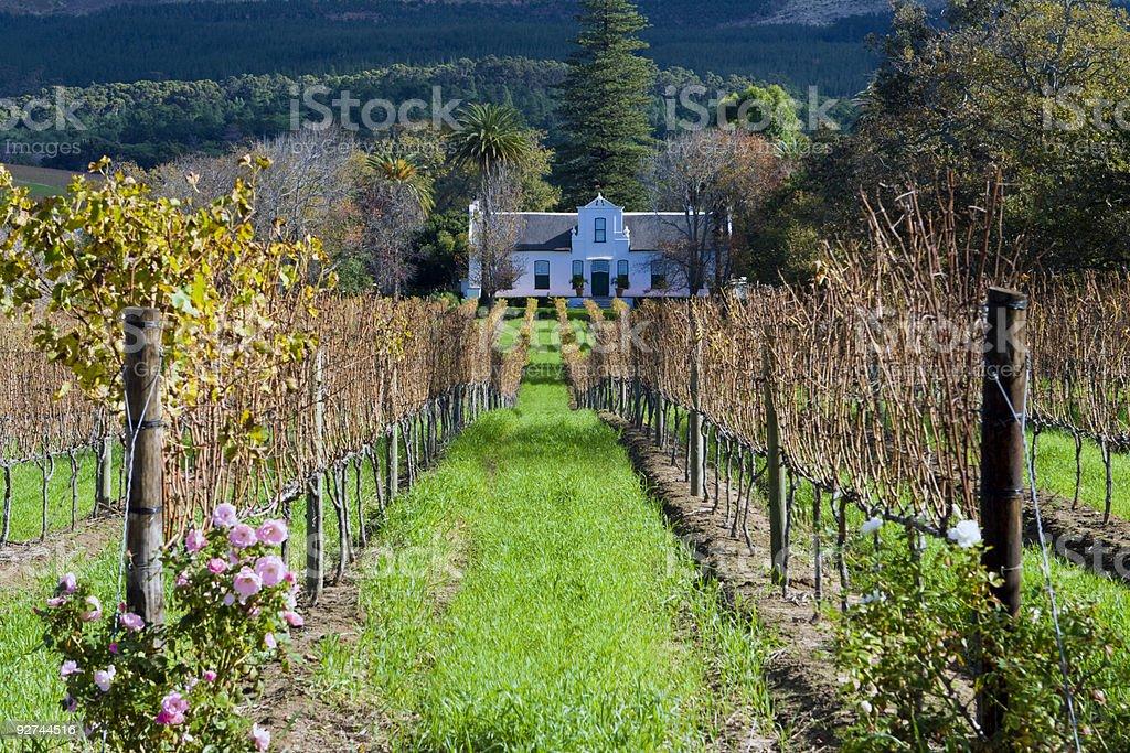 Cape Dutch homestead on a wine farm stock photo