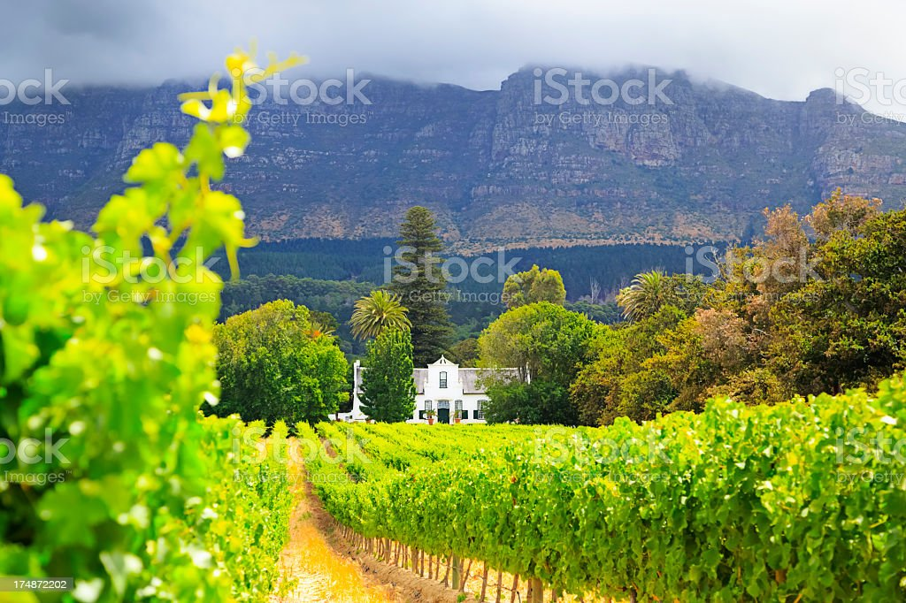 Cape Dutch Manor House in South Africa stock photo