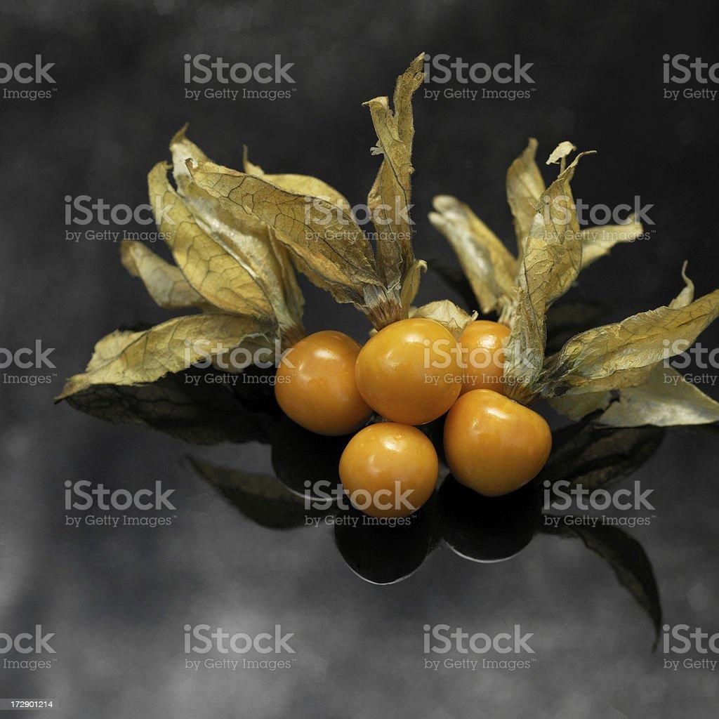 Cape goosberries royalty-free stock photo