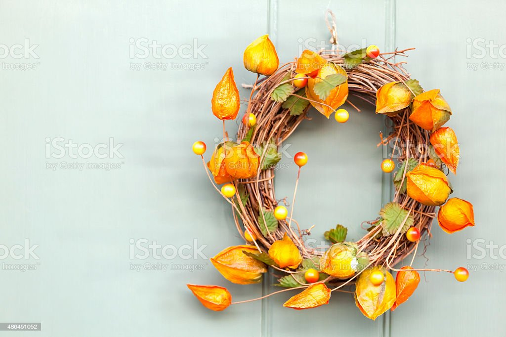 Cape Gooseberry Autumnal Wreath stock photo