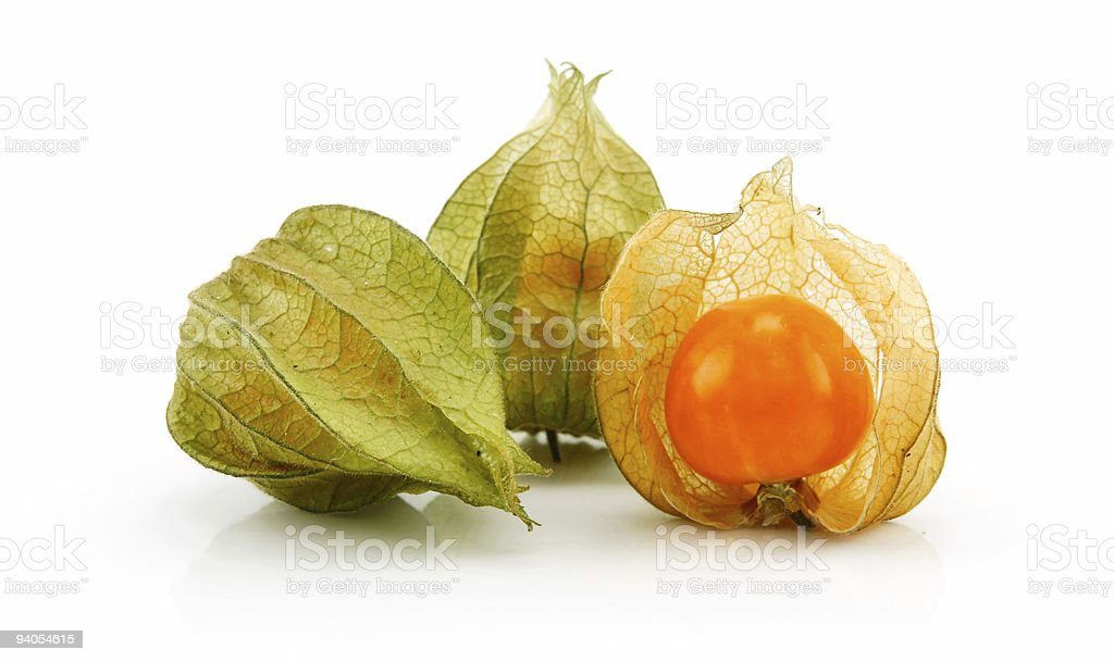 Cape Gooseberry (Physalis) Isolated on White royalty-free stock photo