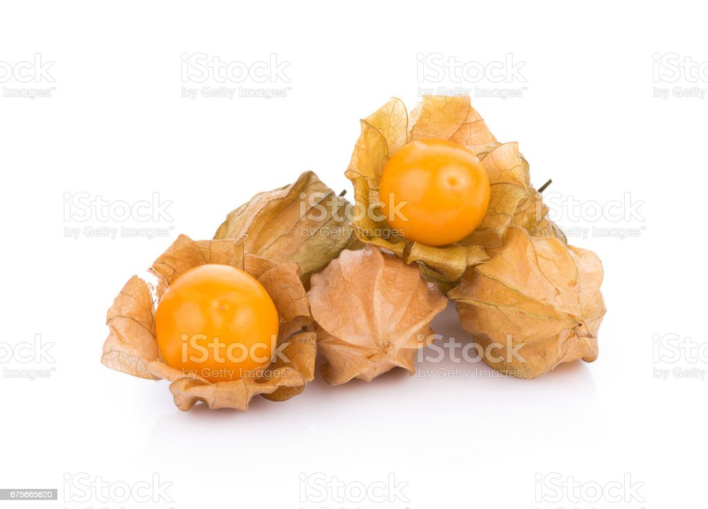 cape gooseberry on white background. physalis stock photo
