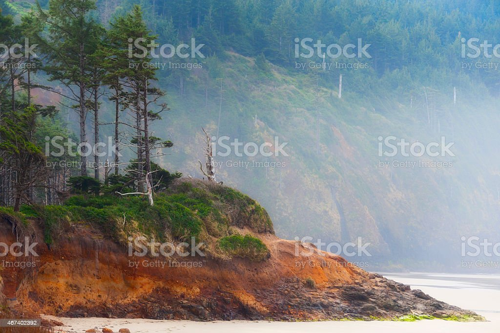 Cape Lookout beach stock photo
