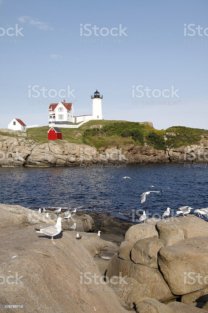 Cape Neddick lighthouse scene with Sea Gulls royalty-free stock photo