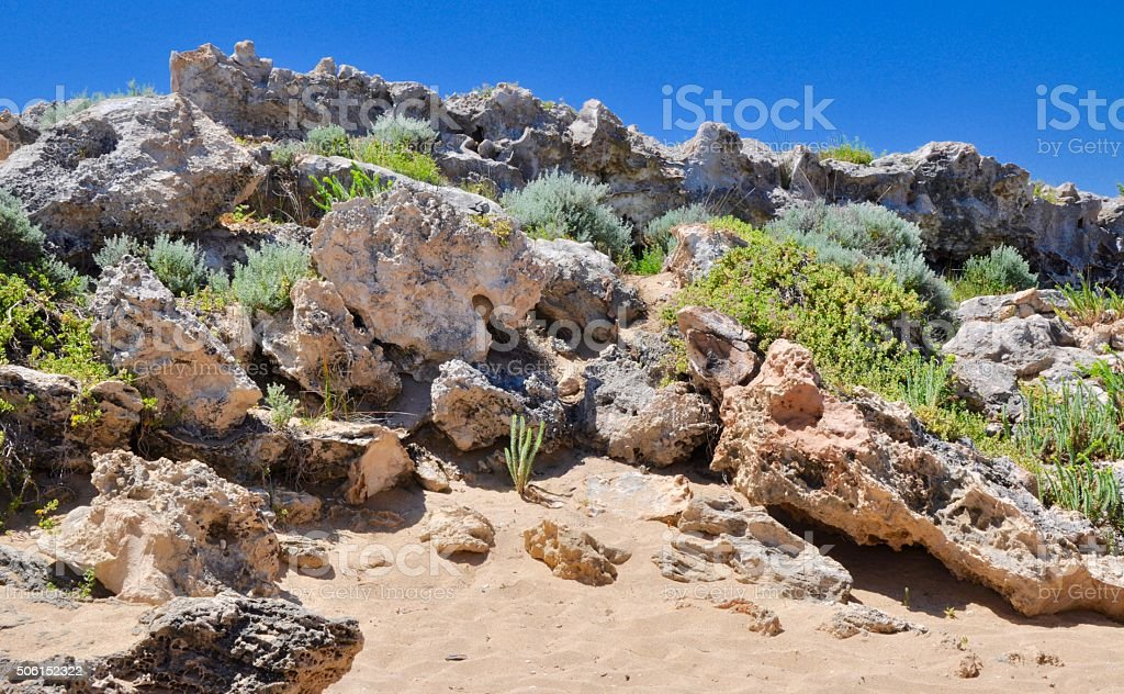 Cape Peron: Rocky Vegetated Dunes stock photo