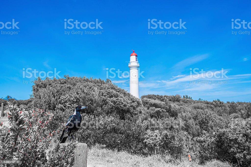 Cape Schanck Lighthouse stock photo