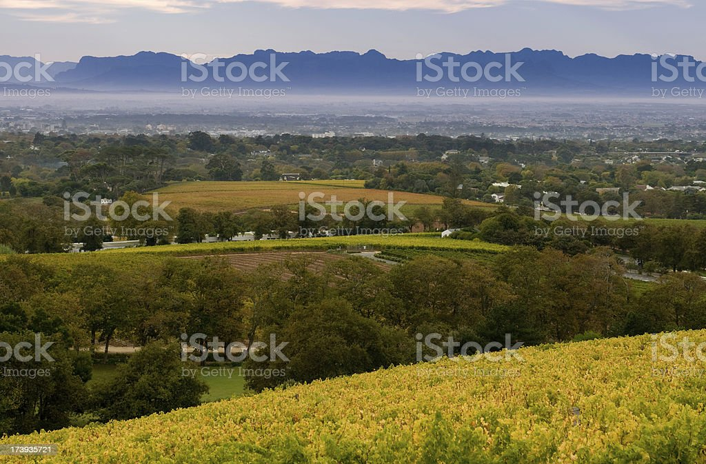 Cape Town view from Groot Constantia stock photo
