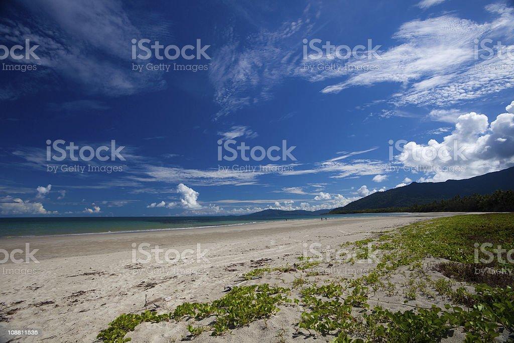 Cape Tribulation stock photo