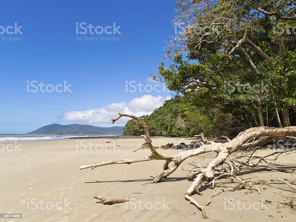Cape Tribulation royalty-free stock photo