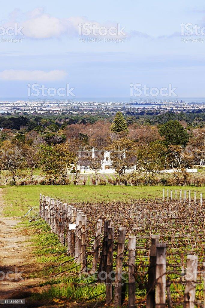 Cape Winelands royalty-free stock photo