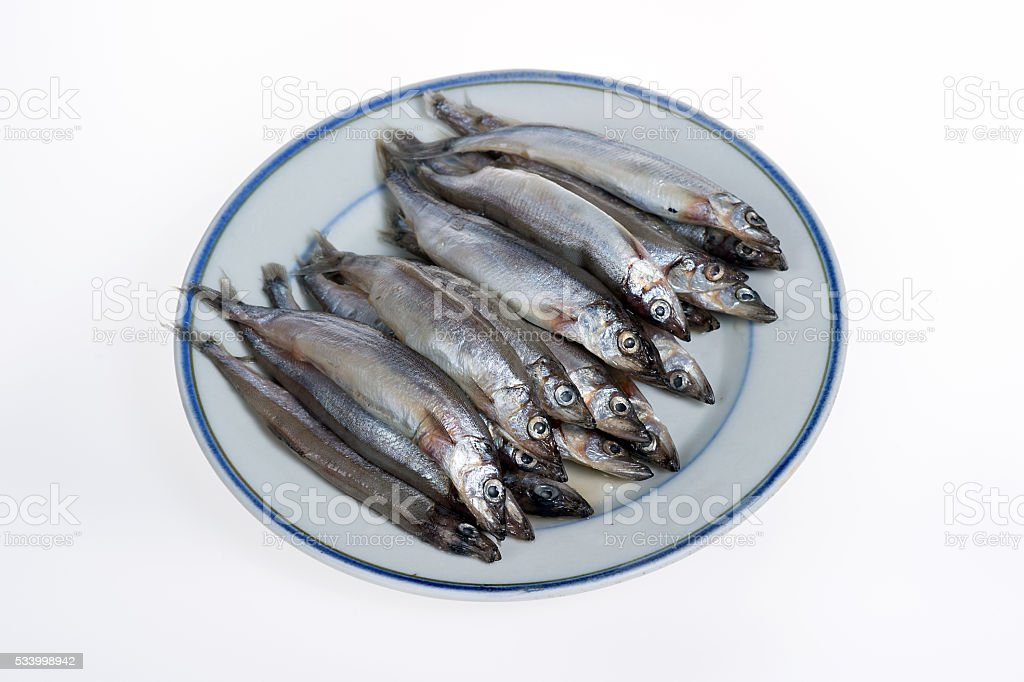 Capelin on a plate isolated on white background stock photo
