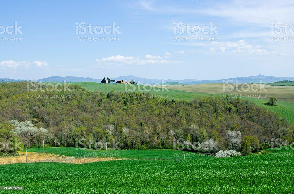 Capella di Vitaleta in Val d'Orcia, Italy stock photo