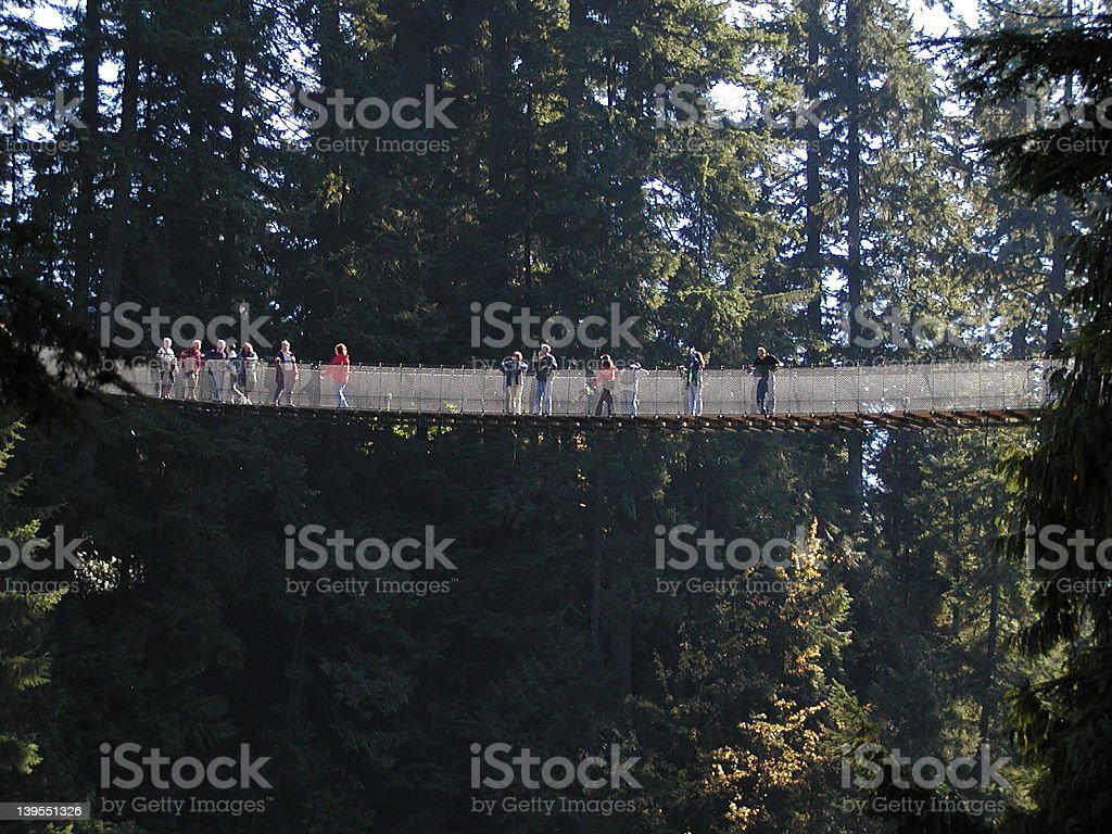 Capilano Bridge royalty-free stock photo