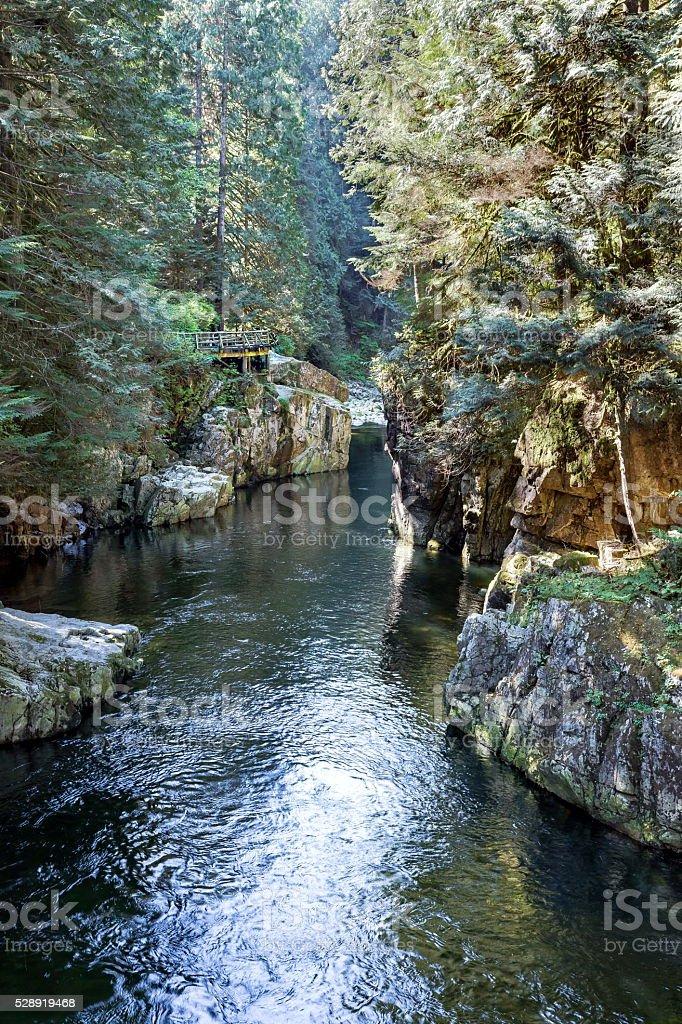 Capilano River stock photo