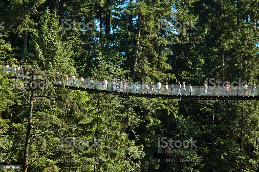 Capilano Suspension Bridge near Vancouver stock photo