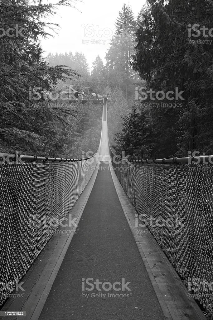 Capilano Suspension bridge stock photo