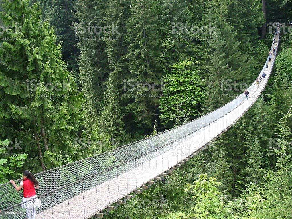 Capilano Suspension Bridge royalty-free stock photo