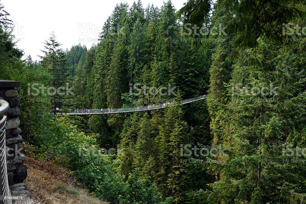 Capilano Suspension Bridge, Vancouver, Canada stock photo