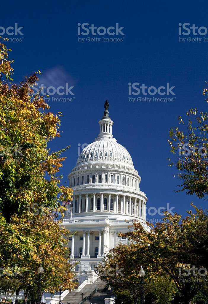 U.S. Capital Building Dome, Washington DC, Autumn Yellow Leaves stock photo