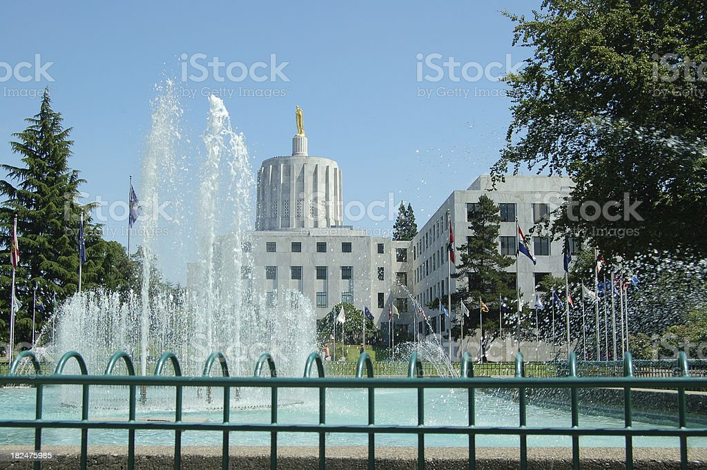 Capitol and Fountain royalty-free stock photo