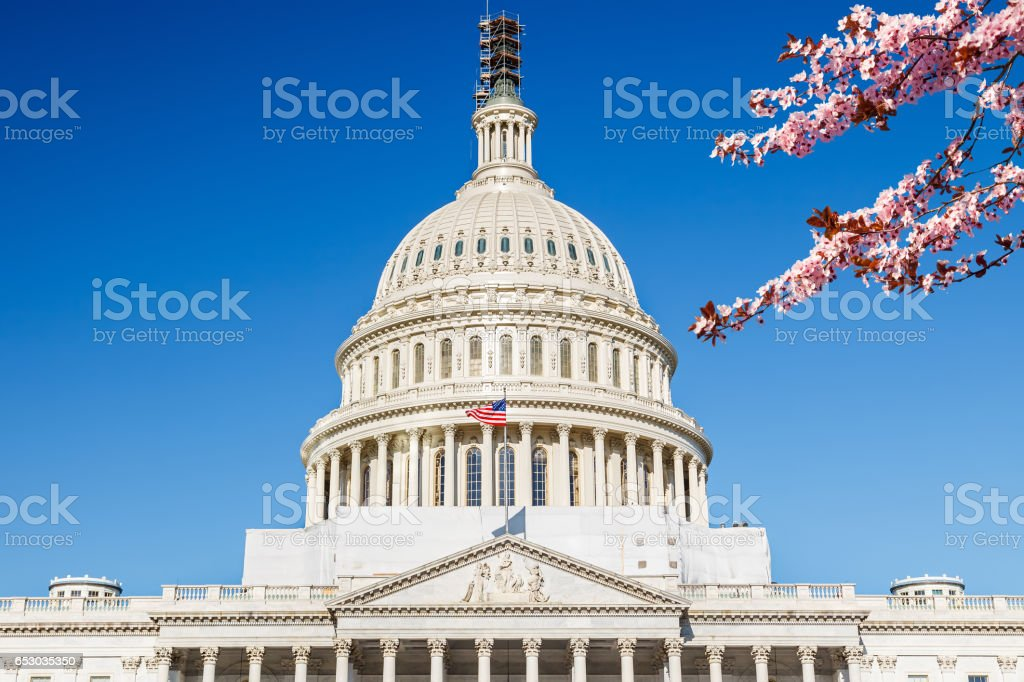 US Capitol at spring sunny day stock photo