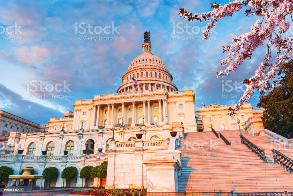 US Capitol at spring sunny evening stock photo