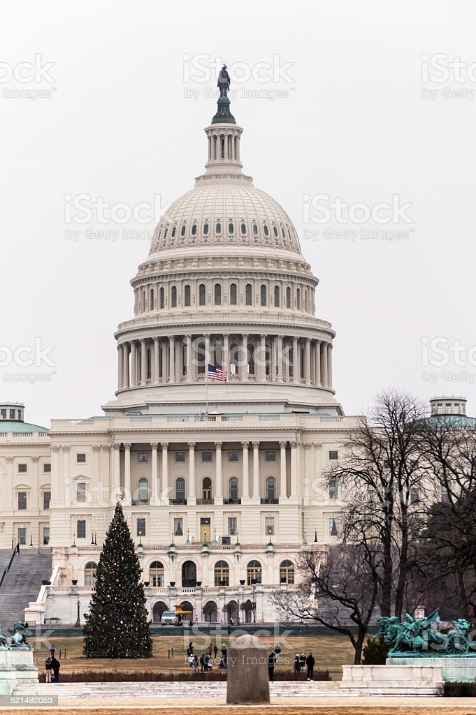 Capitol Building and Christmas Tree in Washington DC stock photo