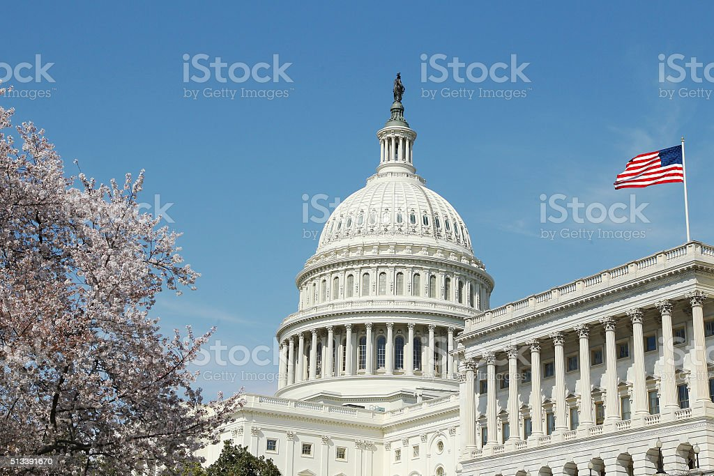 Capitol Building U.S. Congress stock photo