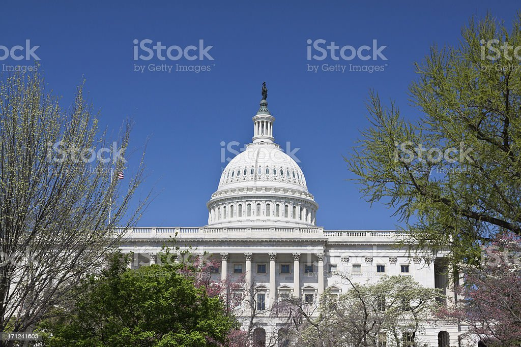 Capitol Building, Washington DC, Clear blue sky. royalty-free stock photo