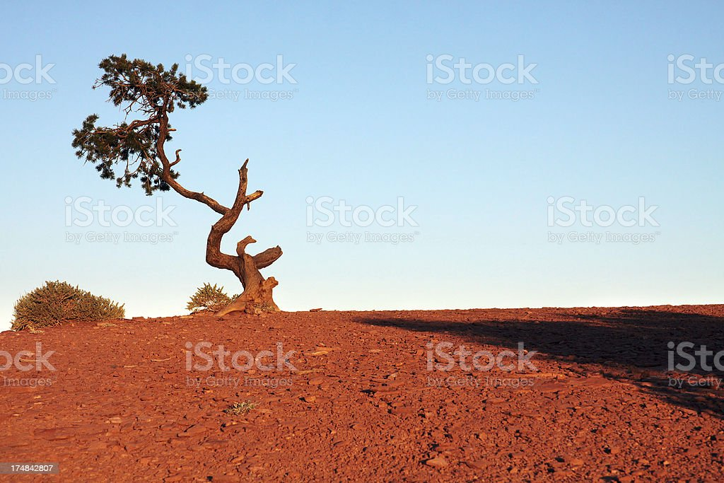 Capitol Reef royalty-free stock photo