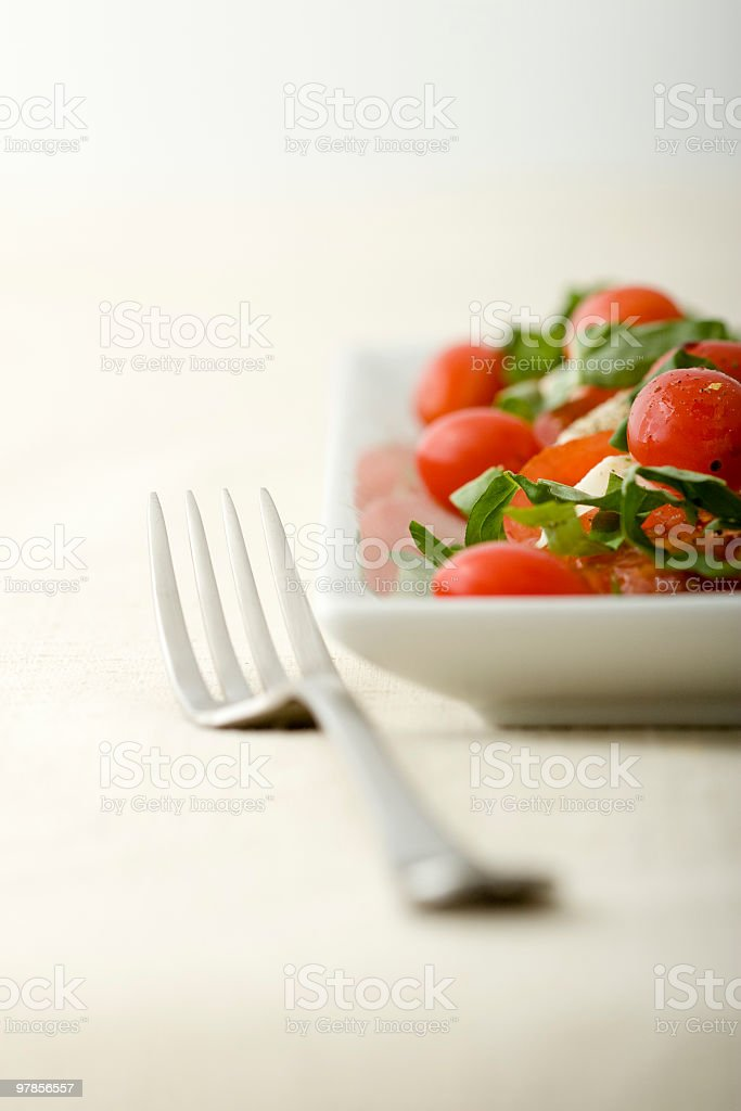 Caprese Salad and Fork royalty-free stock photo