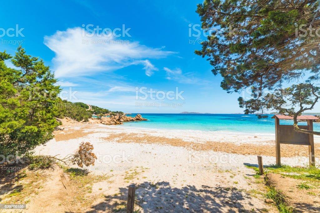 Capriccioli beach on a clear day stock photo