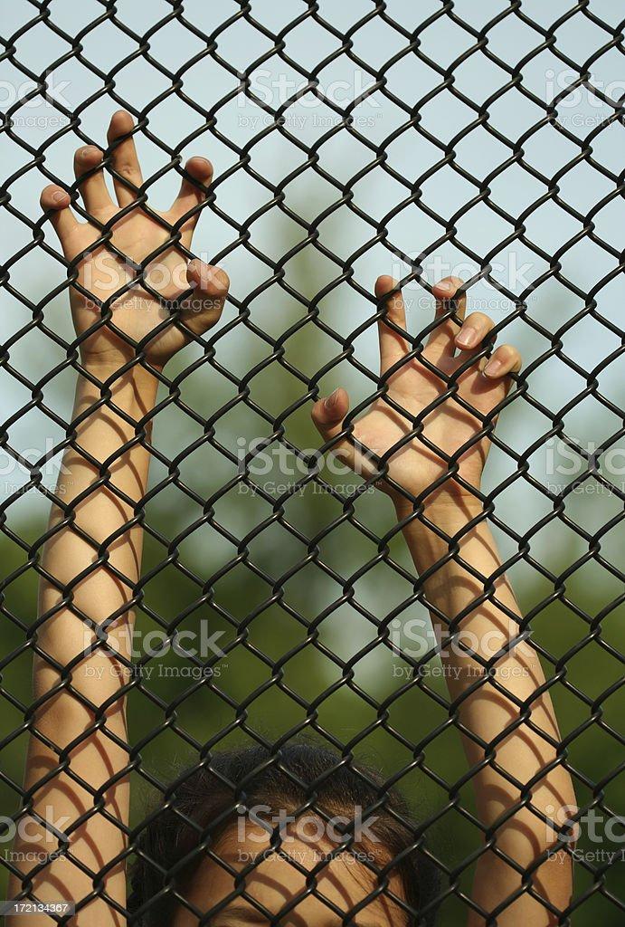 Captive Caged royalty-free stock photo