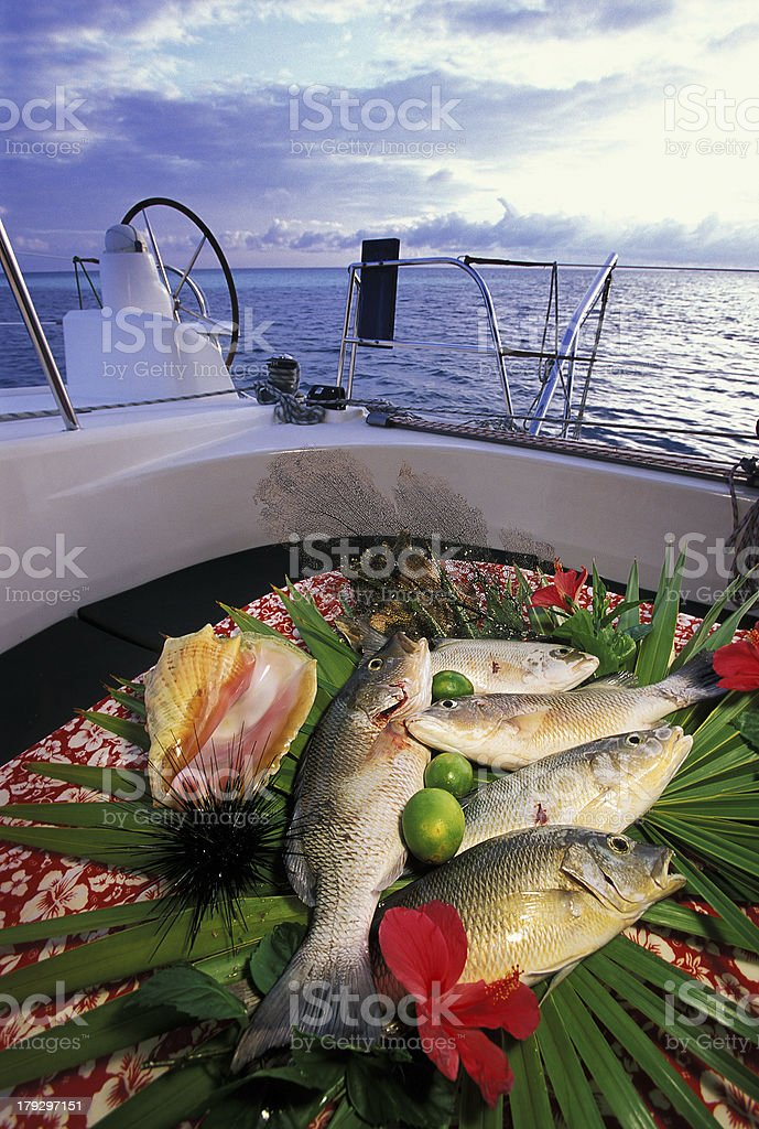 captured fish in a tropical sea on board royalty-free stock photo