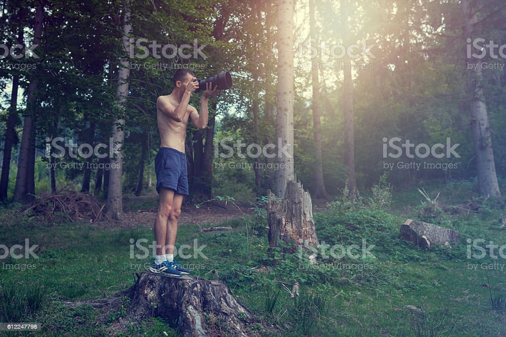 capturing amazing woodland stock photo