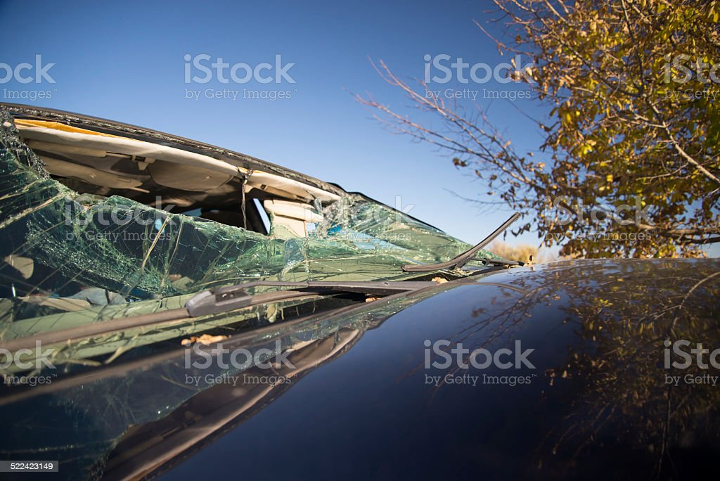 Car crash into tree stock photo