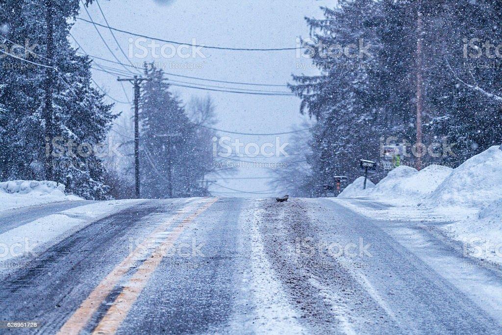 Car Driver POV Slippery Blizzard Snow Rural Highway Hillcrest stock photo