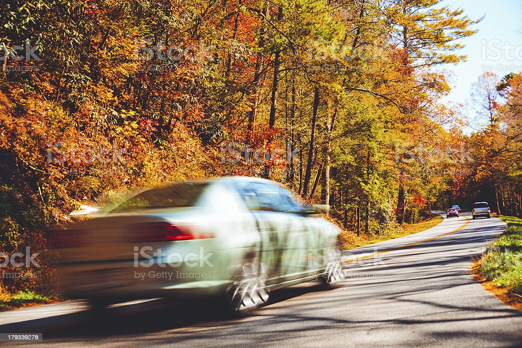Car driving in the forest royalty-free stock photo