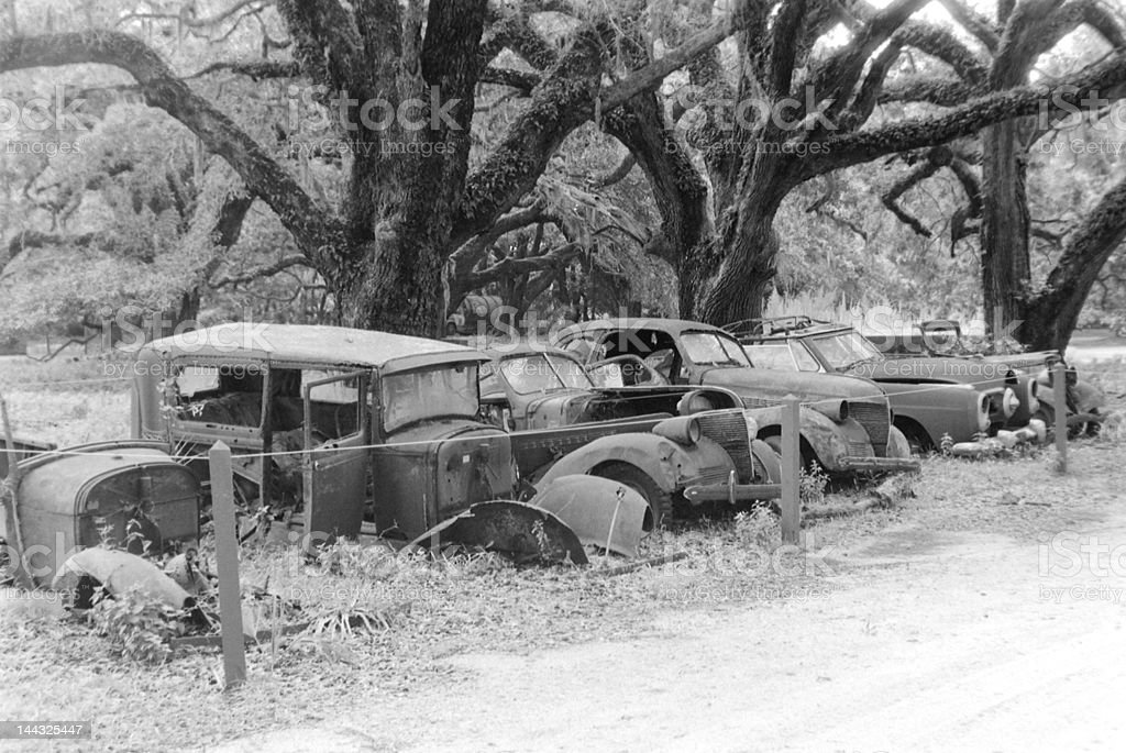 Car Graveyard stock photo